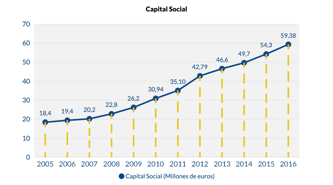 Capital Social_v1